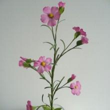 Kunstblumen Sebnitz echte sebnitzer kunstblumen aus seide manufakturhaus
